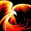 phoenix-alger
