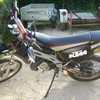 korn21260