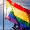 the-rainbow91