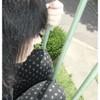 shiyka-album