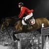 Sondage-Question-Horse-x