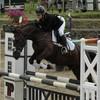 Champion-EquestrianTEAM