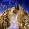 amerindien-loup
