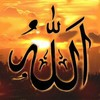 muslima030