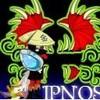 Ipnos-Niglo