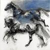 Forever-Pony-Videos