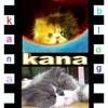 kana1965