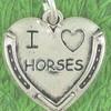 ma-passion-des-chevaux25