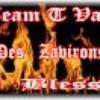team-TVAM