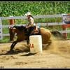 karell-horses