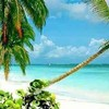 xChanel-Vacances