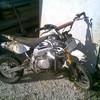 leptimotarddu61380
