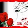 tite-rose-69