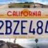 californian-blinks