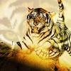tigres02200