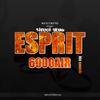 ESPRIT6000AIR