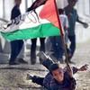 palestinhora