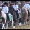 chevalstar2001