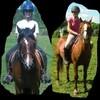 mj-chevaux