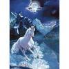 les-chevaux-de-nadia-14