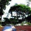 charlotte-basket-59