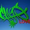 reggaeband