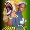 Lion-T