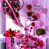 images-d-amour
