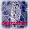 spleensatan