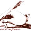 pelicanbleu68