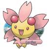 Pokemon--Perle