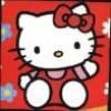 petit-chat-blanc