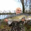 cecefish