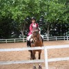ventes-matos-equitation