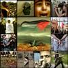 save-Gaza