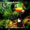 I-love-toucan