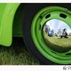 tit-kiwi-tout-vert
