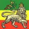 reggae-reggae-reggae