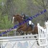 chevauxetponey01