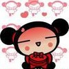 pucca--pucca