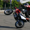 gh-stunt