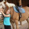 miss-horse-0817