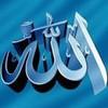 clip-video-islam