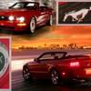 Mustang70110
