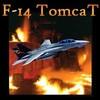 f14tomcat01