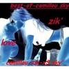 camillou-zik-x3