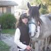 chevauxxx33
