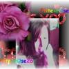 ptite-rose26