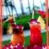 bolla-caraibi