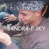 S4NDR4-P